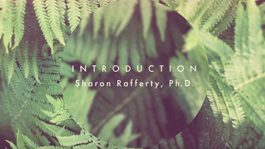 Introducing: Dr. Sharon Rafferty, Soltara Integration Support